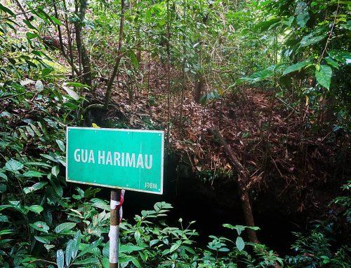 브루나이의 발견되지 않은 동굴 탐험