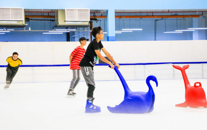 Ice Skating Brunei